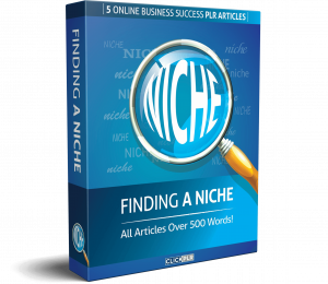 finding a niche - 5 online business success plr articles